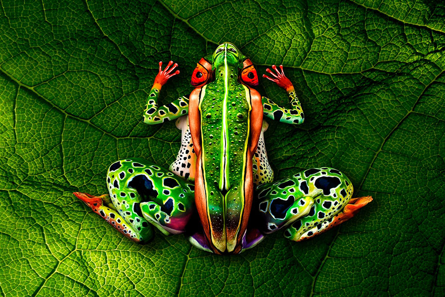 Johanne stotter le bodypainter qui a l'art de creer l'Illusion d'optique parfait (2)